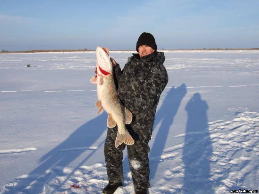 рыбалка в пластуновской видео